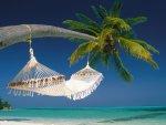 Letní provoz servisu v červenci a srpnu